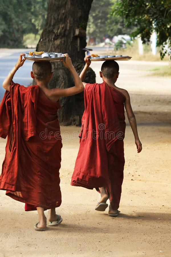 Novice monks recept  alms royalty free stock images