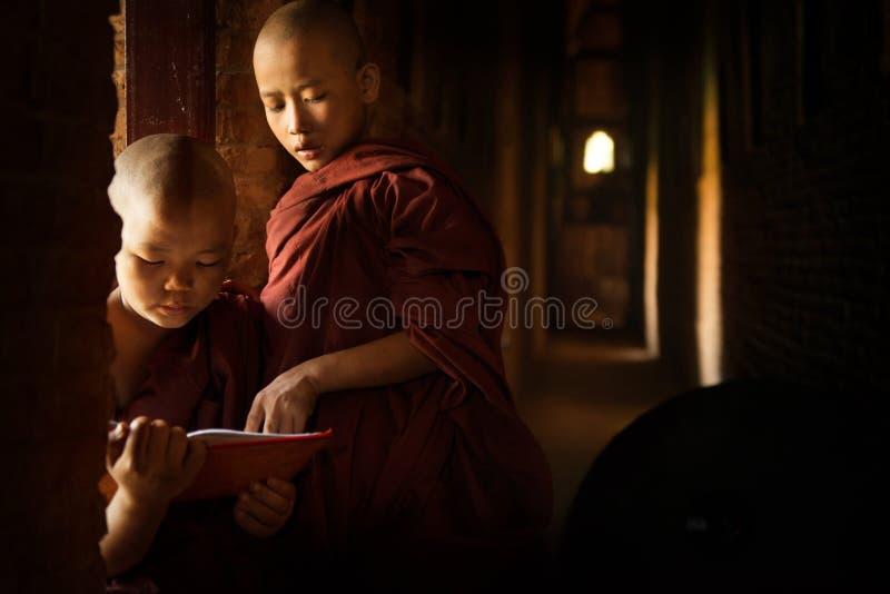 Novices bouddhistes apprenant le temple intérieur image stock