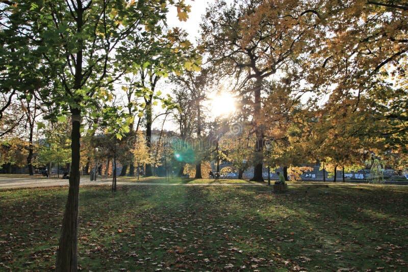 Noviembre en Praga imagen de archivo