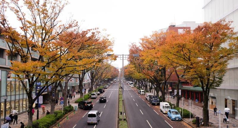 Noviembre 14,2017 Tokio Japón: calle de la ciudad de Tokio Japón en área del harajuku con las hojas del árbol y de otoño en ambos imagenes de archivo