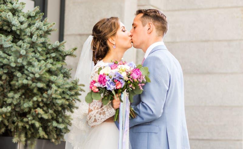 Novio que besa a la novia al aire libre imagen de archivo libre de regalías