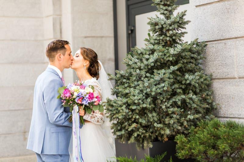 Novio que besa a la novia al aire libre fotos de archivo libres de regalías