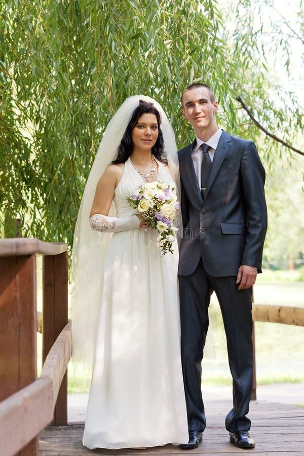 Novio y la novia costada en el puente de madera imagen de archivo
