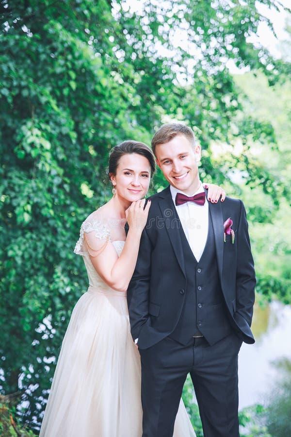 Novio y novia junto Pares de la boda Día de boda Hermoso imagen de archivo libre de regalías