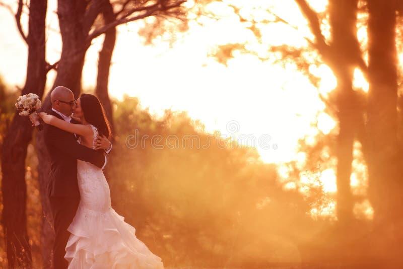 Novio y novia que presentan al aire libre en su día de boda fotografía de archivo