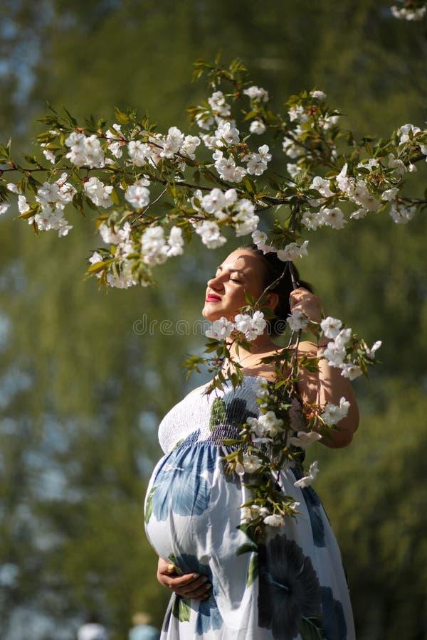 Novo feliz logo a ser mam? da m?e - a mulher gravida nova do viajante aprecia seu tempo livre do lazer em um parque com floresc?n fotos de stock royalty free