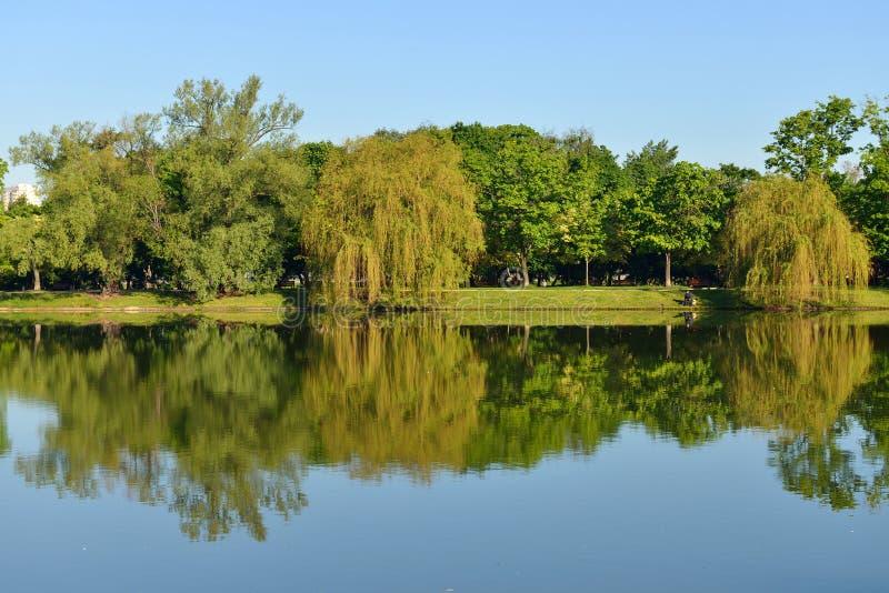 Novodevichy klasztoru staw w Moskwa i park, Rosja LATO krajobraz obrazy royalty free