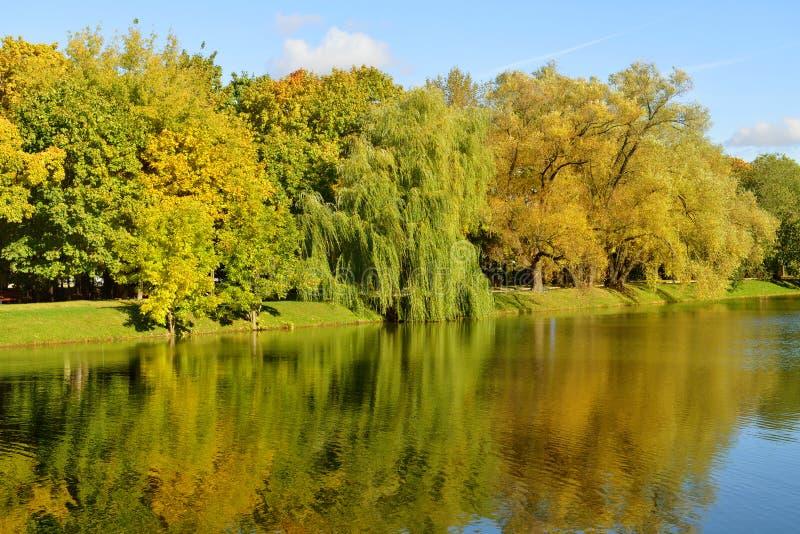 Novodevichy klasztoru staw w złotej jaskrawej jesieni i park fotografia stock