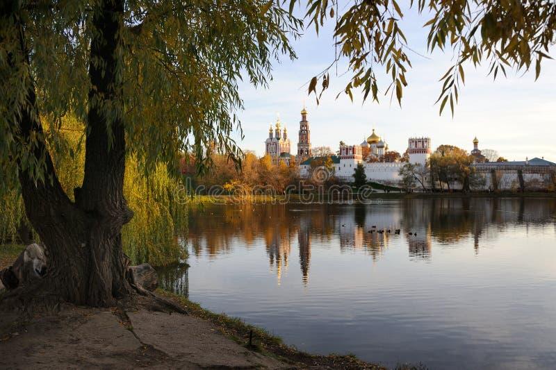 Novodevichy-Kloster gestaltet durch Baum in goldenem Autumn Evening stockfotografie