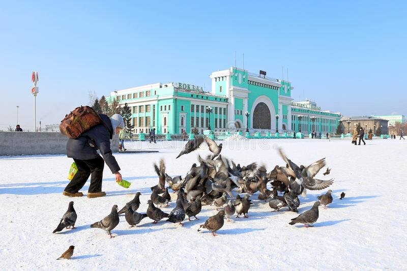 Tourist a Sunny winter day to feed the pigeons on the station sq. Novosibirsk, RUSSIA-FEBRUARY 21, 2016: Garin-Mikhailovsky Square and Novosibirsk-Glavny train royalty free stock photos