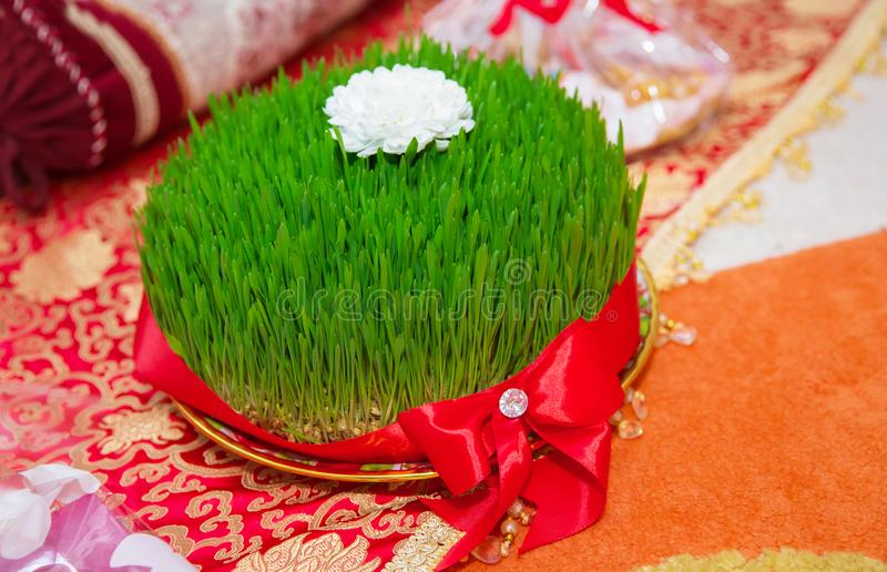 A seminal floor on a red ribbon on a dry grass . Novruz national Azerbaijan holiday spring new year celebration concept, wheat gra. Novruz national Azerbaijan royalty free stock image