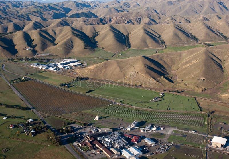 nowa marlborough wytwórnia win Zealand zdjęcie royalty free