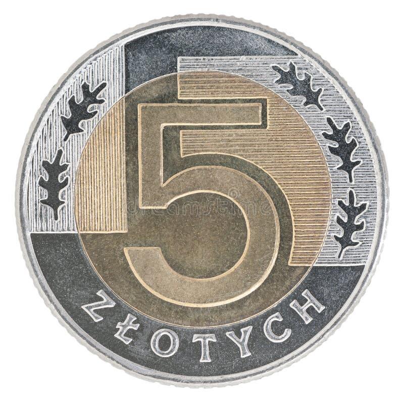 Nowa Polska złoty moneta zdjęcie royalty free