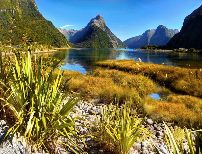 Nowa Zelandia, Fiordland, Sceniczny góra krajobraz zdjęcie stock