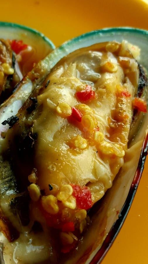 Nowa Zelandia mussel mussel pokrajać z owoce morza kumberlandem zdjęcie stock