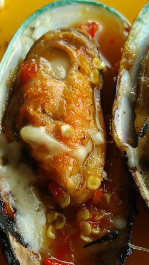 Nowa Zelandia mussel mussel pokrajać z srafood kumberlandem obrazy royalty free