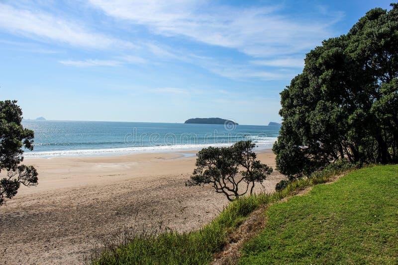 Nowa Zelandia plaża w lecie zdjęcia stock