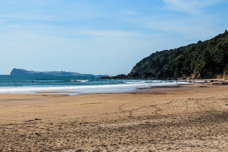 Nowa Zelandia plaża w lecie obraz royalty free