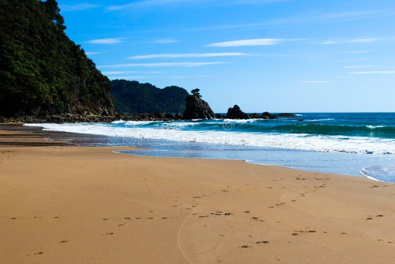 Nowa Zelandia plaża w lecie obraz stock