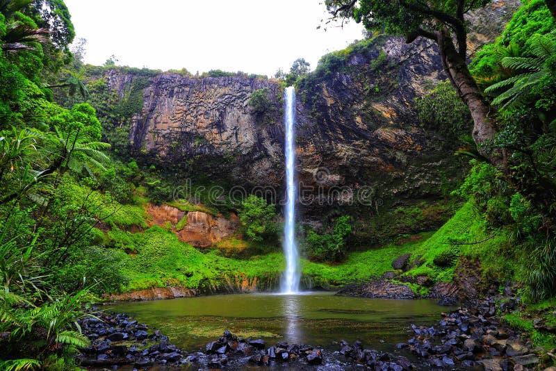 Nowa Zelandia przesłony Bridal spadki - natura park obrazy royalty free