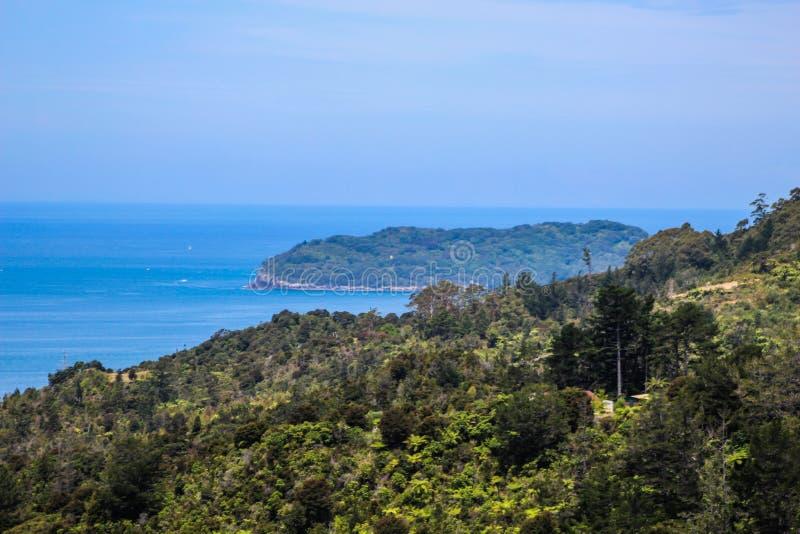 Nowa Zelandia w lecie obrazy stock