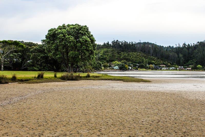 Nowa Zelandia w lecie zdjęcia stock