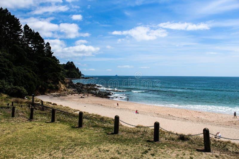 Nowa Zelandia w lecie zdjęcia royalty free