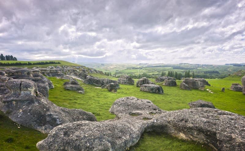 nowe słoń skały Zealand zdjęcia royalty free