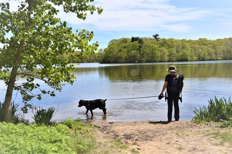 Nowego York long island bludenburgh wjazdu jeziorny pies zdjęcia stock