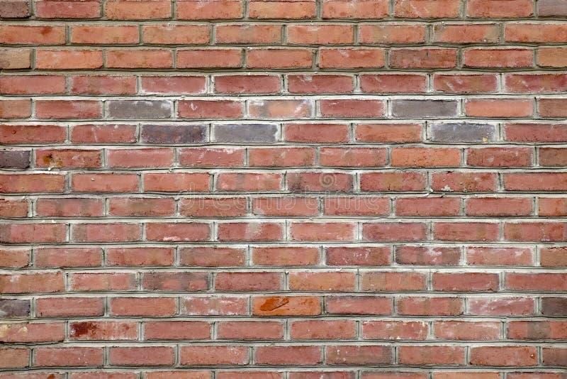Nowej Budowy Brudna Czerwona cegła zdjęcie royalty free