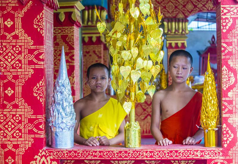 Nowicjuszów michaelita w Luang Prabang Laos obraz royalty free