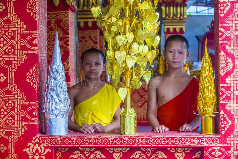 Nowicjusz?w michaelita w Luang Prabang Laos zdjęcia stock