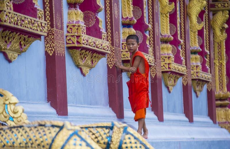 Nowicjusza michaelita w Luang Prabang Laos obraz royalty free