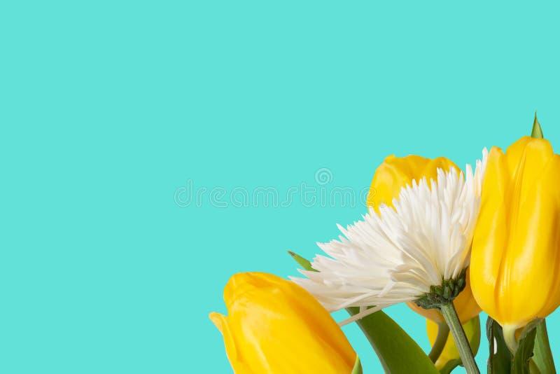 Nowożytnej wiosny turkusowy tło z kwiatami zdjęcie royalty free