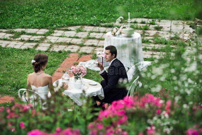 Nowożeńcy ma herbaty w zielonym terenie zdjęcia stock