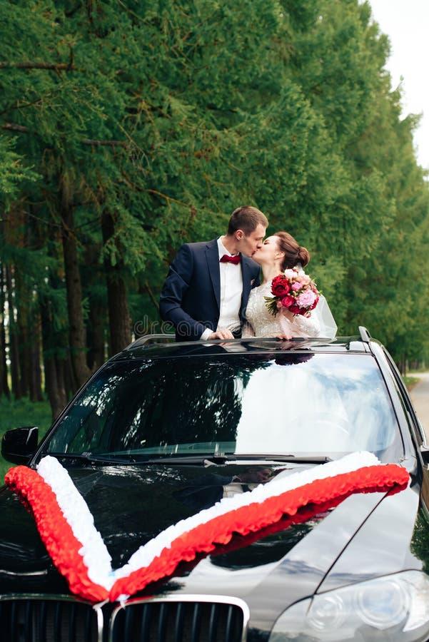 Nowożeńcy outdoors w lato parku na tle sosny 1 zdjęcia stock