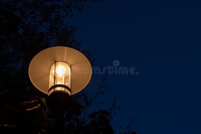 Nowożytna dowodzona latarnia uliczna przeciw zmrokowi - niebieskie niebo fotografia stock