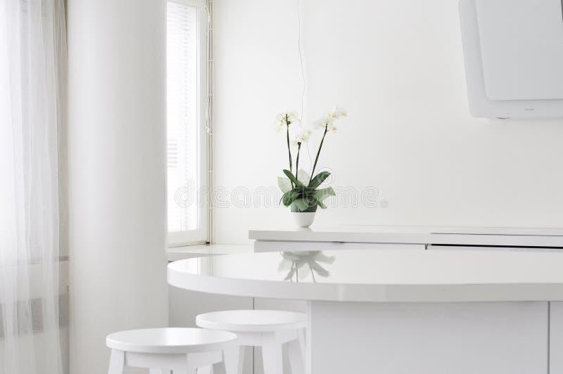 Nowożytna ministerstwo spraw wewnętrznych kuchnia w Finlandia i światło Czysty wnętrze z białą orchideą odbija od stołowej powier fotografia royalty free