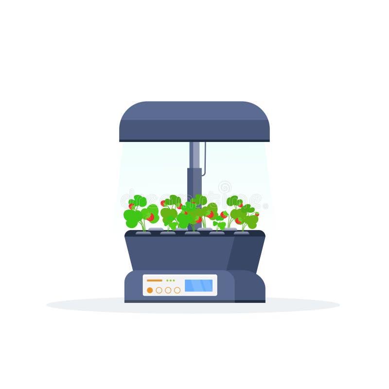 Nowożytnego salowego owoc ogródu terrarium gospodarstwa rolnego szklanego zbiornika cyfrowy szklarniany elektroniczny eco uprawia ilustracja wektor