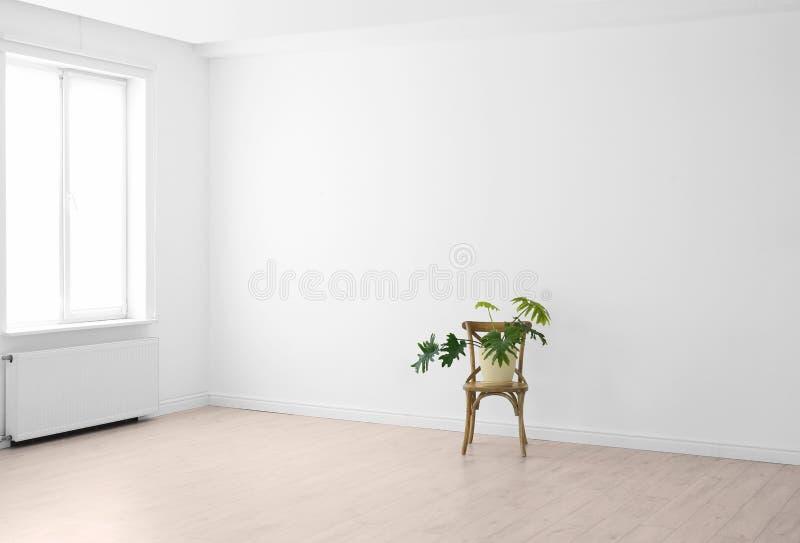 Nowożytny żywy izbowy wnętrze z okno i houseplant na krześle zdjęcia royalty free