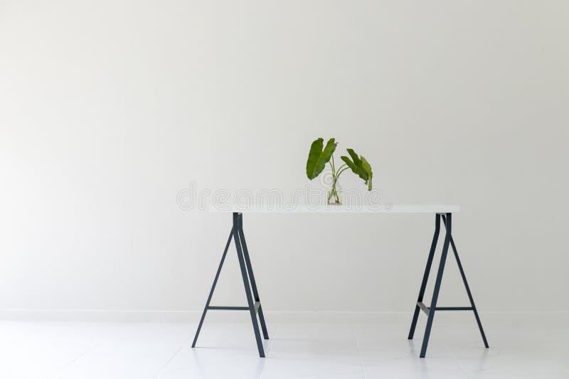 Nowożytny biały biurowy wnętrze z bielu stołem i zieleń liścia wazą fotografia stock