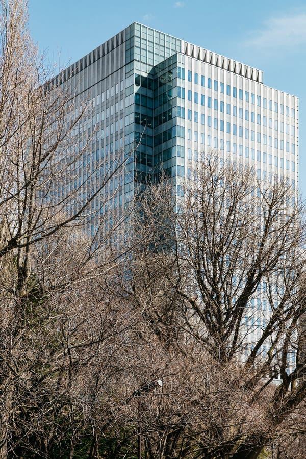 Nowożytny budynek prostokąt i kwadratów okno tworzą z jasnym niebieskim niebem i Bezlistnymi drzewami w przedpolu w Sapporo fotografia royalty free