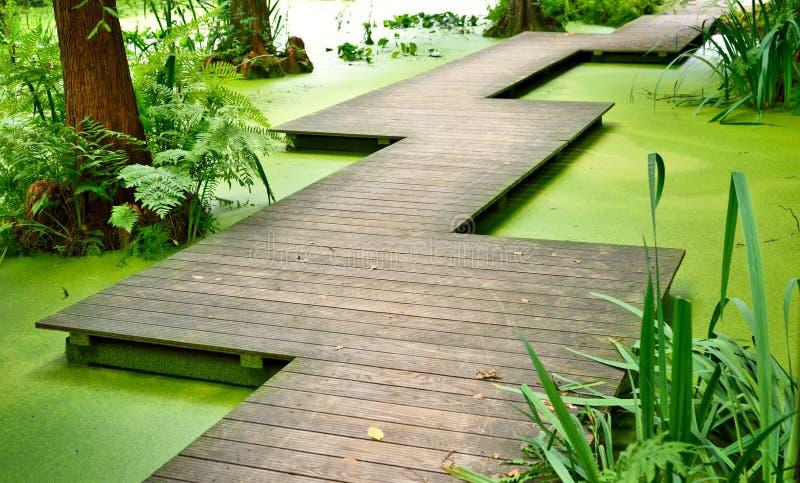 Nowożytny footpath lub gangplank nad stawem zdjęcia stock