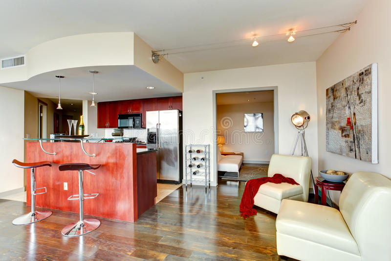 Nowożytny kuchenny wnętrze. zdjęcie royalty free