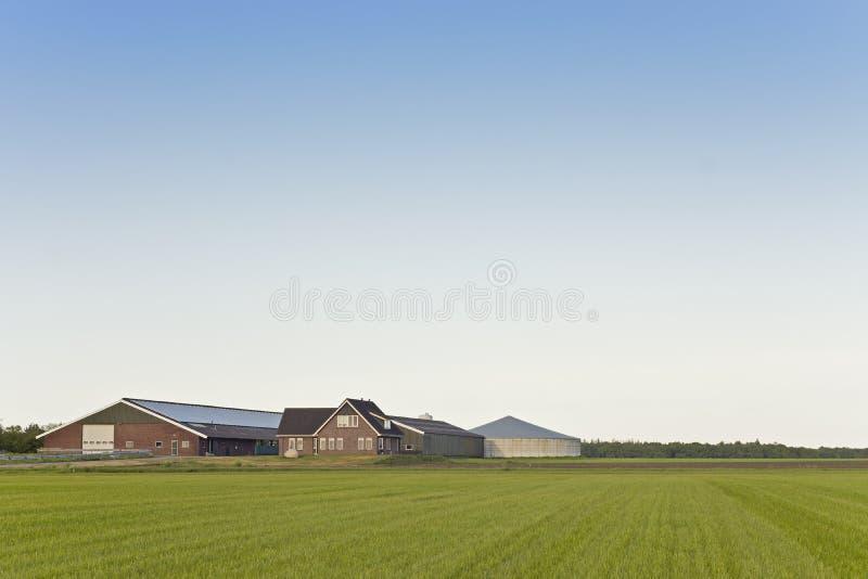 Nowożytny nabiału gospodarstwo rolne obraz royalty free