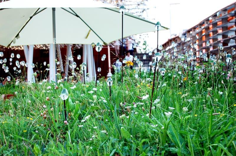 Nowożytny ogród zdjęcie stock
