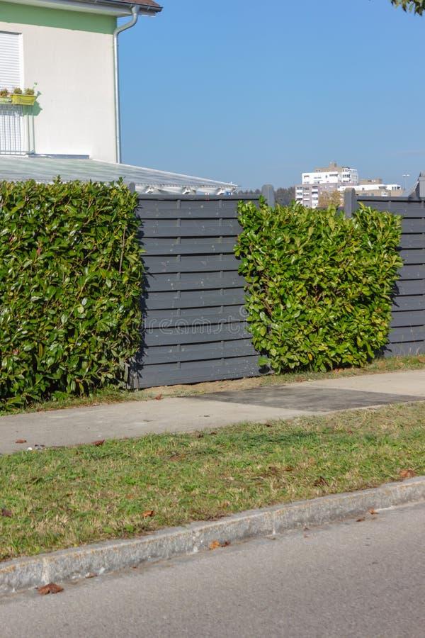 nowożytny popielaty drewniany ogródu ogrodzenie obraz stock
