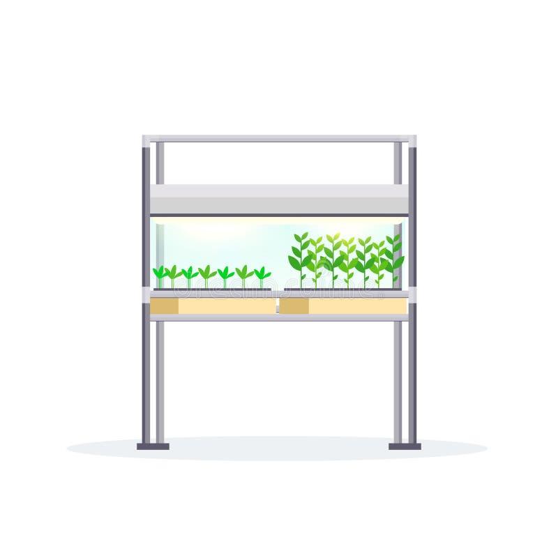 Nowożytny salowego ogródu terrarium gospodarstwa rolnego szklanego zbiornika cyfrowy szklarniany elektroniczny eco uprawia ziemię royalty ilustracja