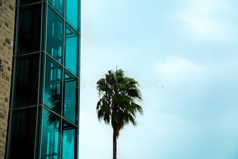 Nowożytny szklany budynek przeciw niebieskiemu niebu Abstrakcjonistyczna szczegółu rówieśnika architektura fotografia royalty free