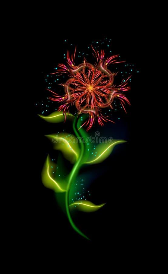 Nowo?ytny Czerwony kolorowy rozjarzony kwiat nad czerni? Modny ornamentacyjny kwiecisty ognisty element w tle Pi?kni iluminuj?cy  royalty ilustracja
